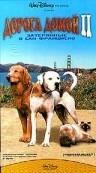 Дорога домой 2: Затерянные в Сан-Франциско 1996